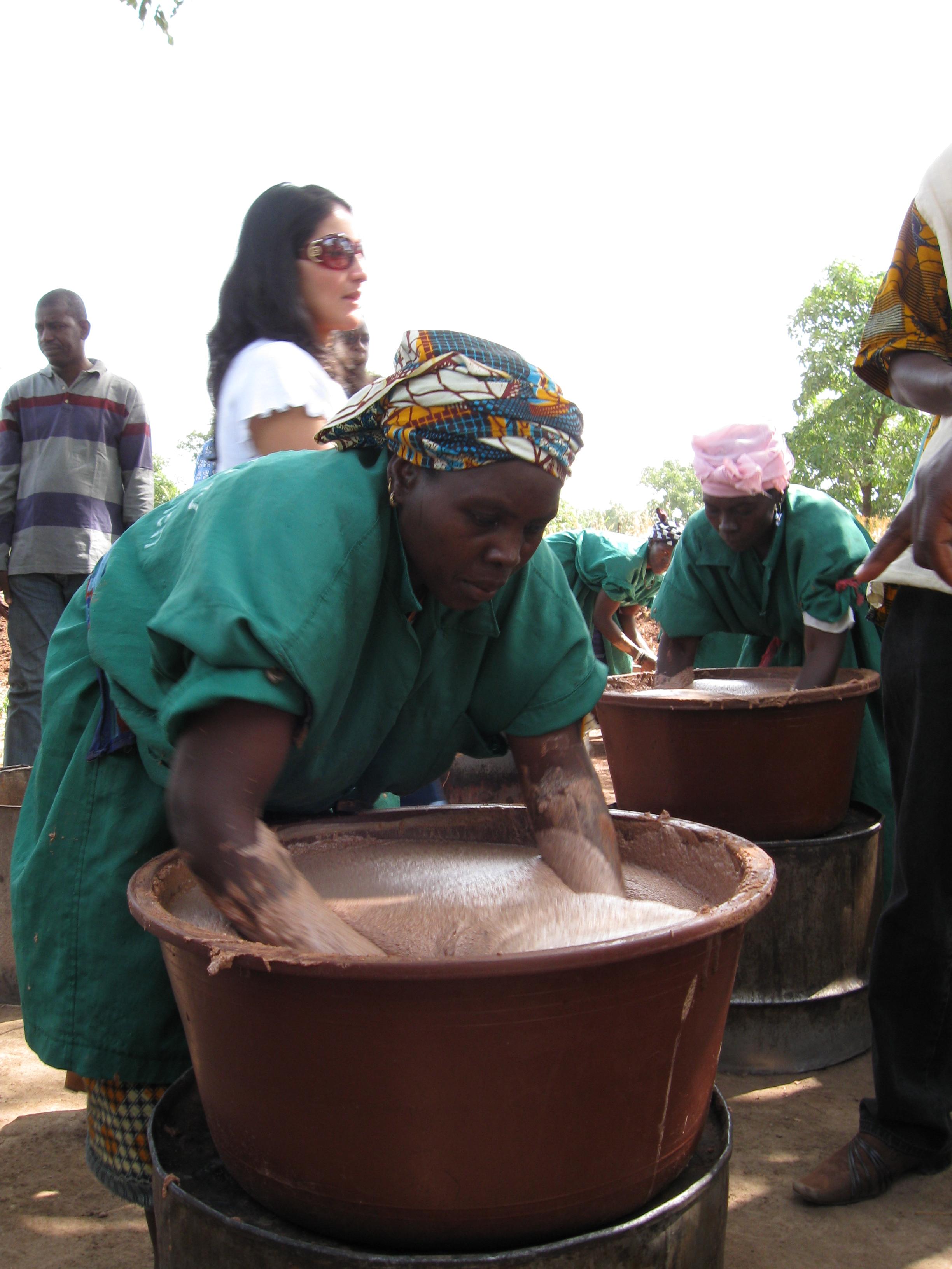 african struggles today zeilig leo dwyer peter